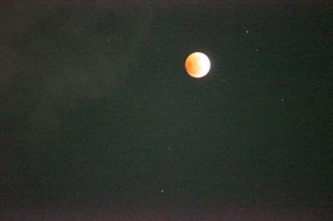 Moon2236